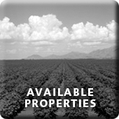 Available Properties Button